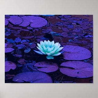 Lotus Flower Purple Blue Turquoise Floral Pond Zen Poster