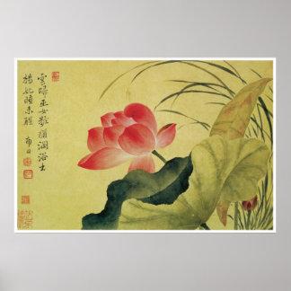 Lotus Flower Yun Shouping Print