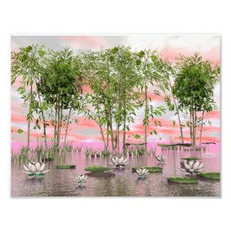 Lotus flowers and bamboos - 3D render Photo Print