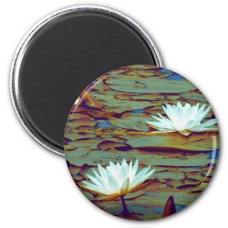 Lotus Flowers Magnet