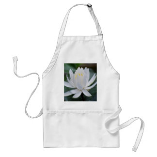 Lotus or waterlily and meaning aprons