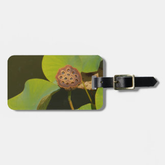 Lotus Pod and Lilly Pad Tag For Luggage