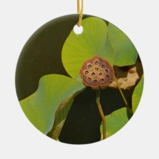 Lotus Pod and Lilly Pad Round Ceramic Decoration