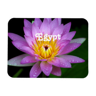 Lotus Rectangle Magnets