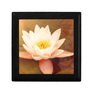 Lotus Small Square Gift Box