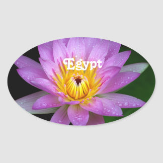 Lotus Oval Sticker