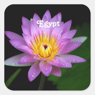 Lotus Square Sticker
