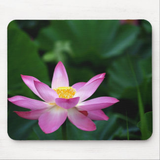 Lotus Tranquillity Mouse Pad