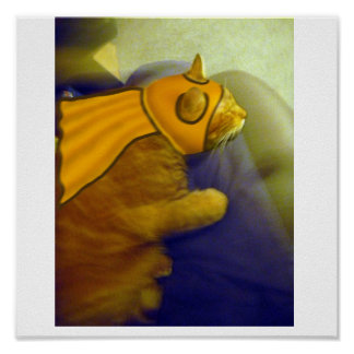 Louie the Ginger Cat as Captain Me-Ow Posters