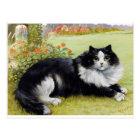 Louis Wain Cat, Black & White Cat Postcard
