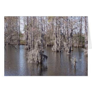 Louisiana Bayou Card