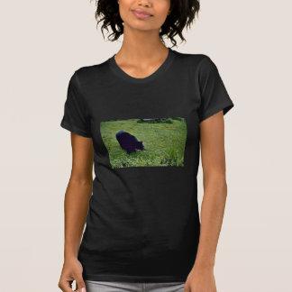 Louisiana Black Bear Shirt