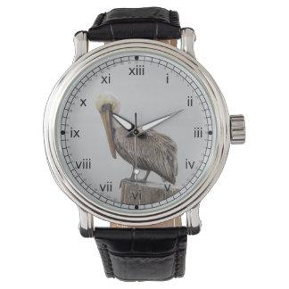 Louisiana Brown Pelican Watch