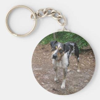 Louisiana Leopard Dog Key Ring
