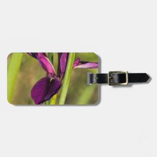 Louisiana Purple Gamecock Iris Luggage Tag