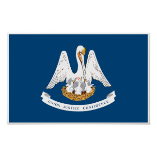 Louisiana State Flag Poster