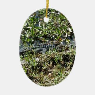 Louisiana Swamp Alligator in Jean Lafitte Close Up Ceramic Ornament