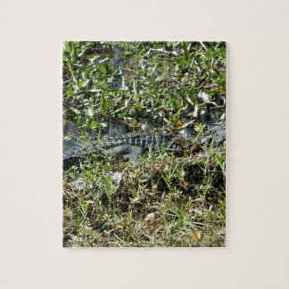 Louisiana Swamp Alligator in Jean Lafitte Close Up Jigsaw Puzzle