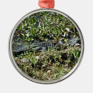 Louisiana Swamp Alligator in Jean Lafitte Close Up Metal Ornament