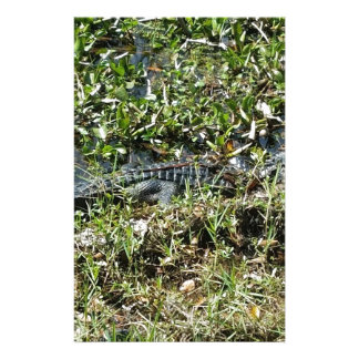 Louisiana Swamp Alligator in Jean Lafitte Close Up Stationery