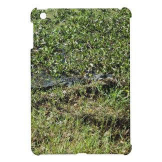 Louisiana Swamp Alligator in Jean Lafitte iPad Mini Cover
