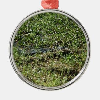 Louisiana Swamp Alligator in Jean Lafitte Metal Ornament