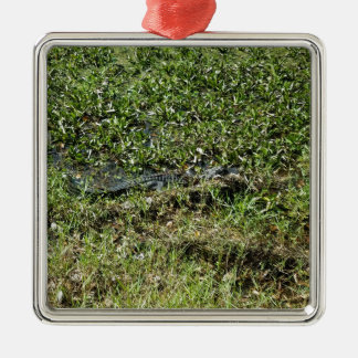 Louisiana Swamp Alligator in Jean Lafitte Metal Ornament
