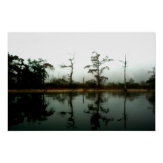 Louisiana Swamp Morning Poster