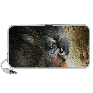 Lounging Gorilla Speaker
