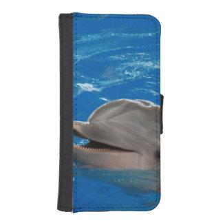 Lovable Dolphin