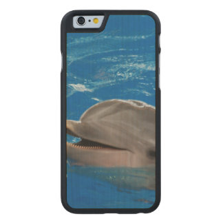 Lovable Dolphin Carved® Maple iPhone 6 Slim Case