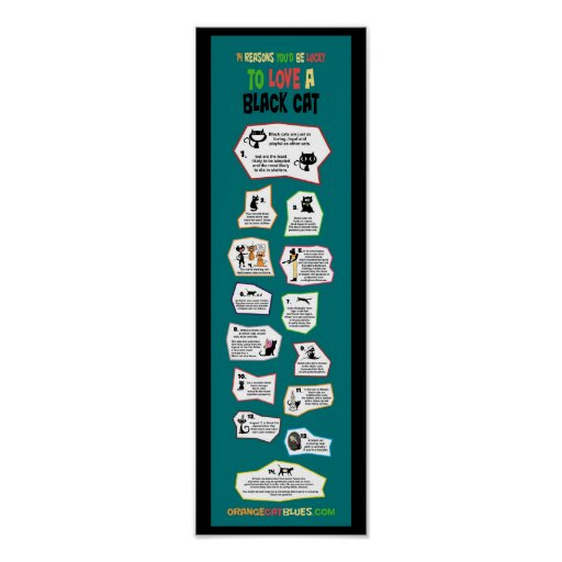 Love a Black Cat Discount Tiny Infographic Poster