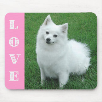 Love American Eskimo Puppy Dog Mousepad