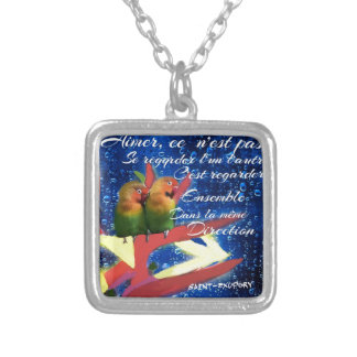 Love , Amour, message Silver Plated Necklace