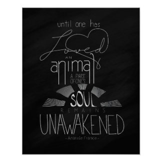 Love an Animal Anatole France Hand Lettered Poster
