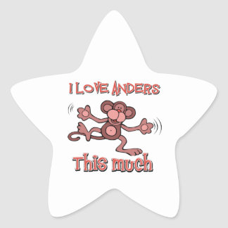 Love Anders Star Stickers