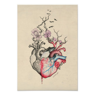 Love art two anatomical hearts with flowers Print Photo
