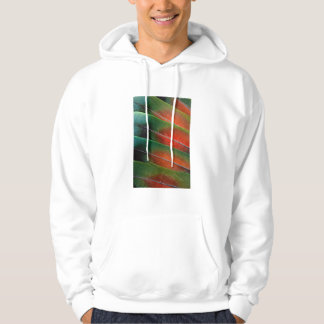 Love bird feather close-up hoodie