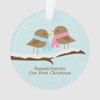 Love Birds Couple Personalized Christmas Ornament
