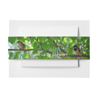 Love birds on a branch invitation belly band