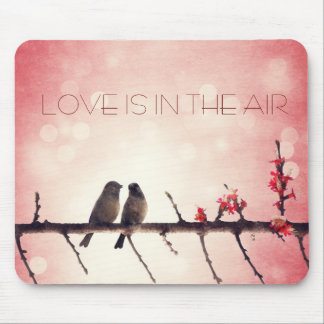 Love birds story mouse pad