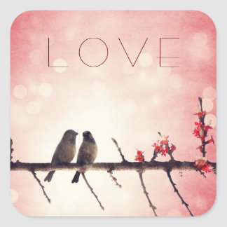 Love birds story sticker