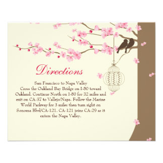 Love Birds Vintage Cage Cherry Blossom Directions Flyer