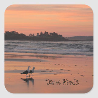 Love Birds Walk the Beach Square Sticker