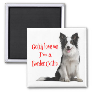 Love Black & White Border Collie Puppy Red Magnet