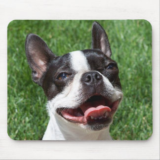 Love Boston Terrier Puppy Dog Computer Mousepad