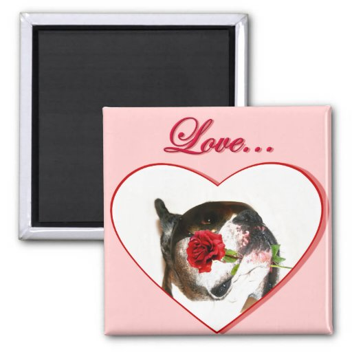 Love Boxer Dog with Red Rose magnet
