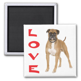 Love Boxer Puppy Dog Fridge Magnet 2 Inch Square Magnet