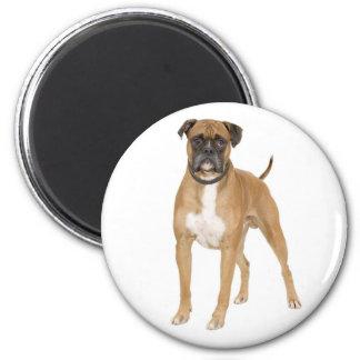 Love Boxer Puppy Dog Fridge Magnet Fridge Magnets