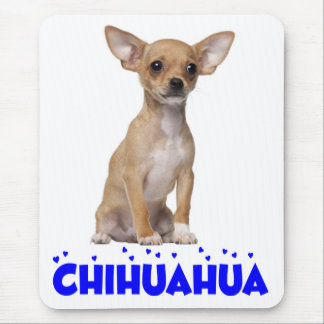 Love Chihuahua Puppy Dog Canine Blue Mouse Pad